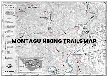 montagu hiking